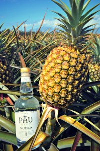 Pau Maui Pineapple Field