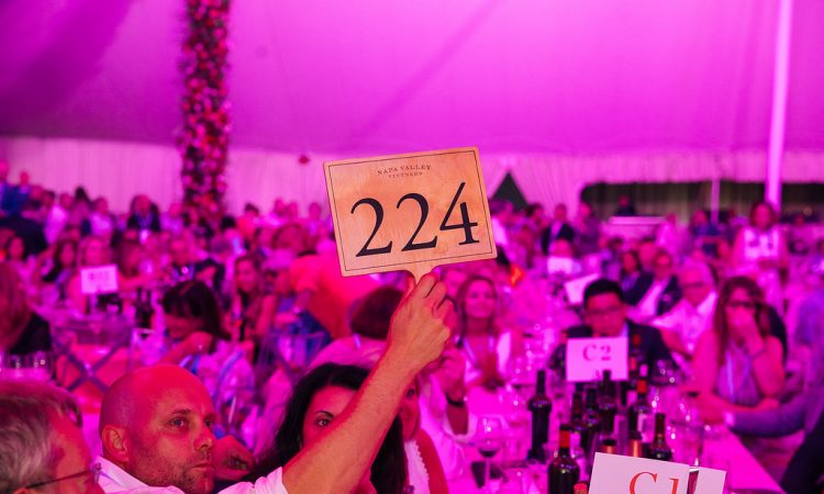 NVV Live Auction 2019