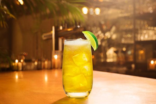 Bacardi Spiced Rum & Ginger